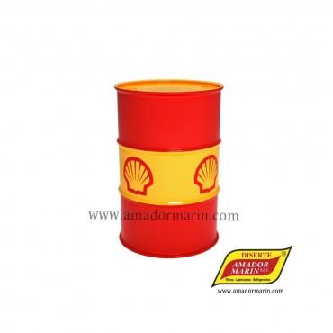 Shell Tegula V 32 209l